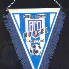 Fanion Clubul Sportiv ARO CAMPULUNG MUSCEL