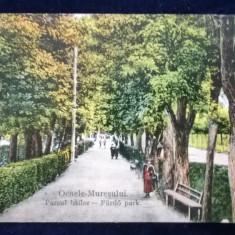 Ocnele Muresului - Parcul bailor - circulata