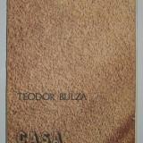 Teodor Bulza - Casa serpilor - Roman, Anul publicarii: 1982