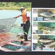 CUBA 2008, Fauna - Pesti, serie completa neuzata, MNH - Timbre straine