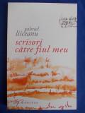 GABRIEL LIICEANU - SCRISORI CATRE FIUL MEU - BUCURESTI - 2008