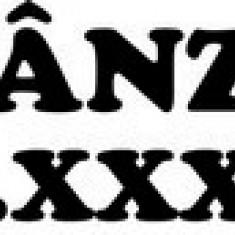 STICKER - DE VANZARE / COD - DIV_009 / ORICE CULOARE / ORICE STICKER LA COMANDA - Stickere tuning