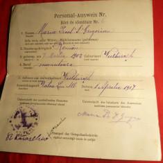 Permis german de Libera Trecere pt. un cetatean roman - ww1 1917 - Pasaport/Document, Romania 1900 - 1950
