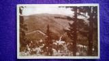 Sinaia - Vedere spre Valea Rea -circulata '58 nr 649 - RPR