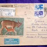 Plic circulat Recomandat - Intreg postal + timbre CCP - Motiv fauna - Par avion