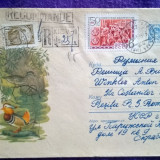 Plic circulat Recomandat - Intreg postal + timbre CCP - Motiv fauna