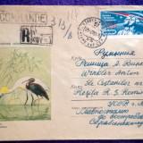 Plic circulat Recomandat + timbre CCP - Motiv fauna - pasari