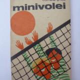 Minivolei