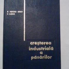 Cresterea industriala a pasarilor  - M. Popescu Baran / R4p1F