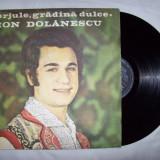 Disc vinil ( vinyl , pick-up ) ION DOLANESCU - Gorjule, gradina dulce (in stare foarte buna)