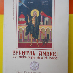 Sfantul Andrei cel nebun pentru Hristos-Sfanta Manastire Paraclitu-243 pag