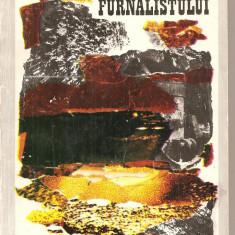 (C2882) CARTEA FURNALISTULUI DE P. TOCU, M. VLADESCU SI S. CALINESCU, EDITURA TEHNICA, BUCURESTI, 1976 - Carti Metalurgie