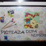 PICTEAZA DUPA NUMERE 20 x 30 cm. Mutulica din Alba ca Zapada - Joc board game