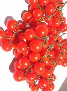 "Seminte rosii cherry ""Riesentraube"" foto mare"