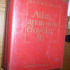 ATLAS ANATOMIE CLOVEKA * Atlas Anatomie Umana - 3 Vol. - R. D. Sinelnikov