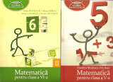 Manual-Matematica cl. V-a +cl. VI-a