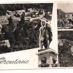 Carte postala(ilustrata)-Baile Herculane-colaj