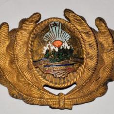 Emblema chipiu, efecte militare