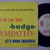 Disc vinil ( vinyl , pick-up ) PATRU SUCCESE ALE MUZICII POP ( format mic 45 - STM - EDC 10.317 )