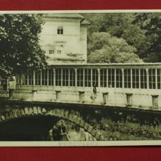 Carte postala - Baile Herculane / vedere - necirculata anii 50 !