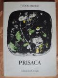PRISACA - TUDOR ARGHEZI - carte pentru copii