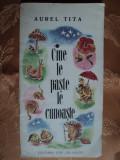 CINE LE PASTE LE CUNOASTE - AUREL TITA  - carte de ghicitori pentru copii