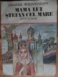 MAMA LUI STEFAN CEL MARE - DIMITRIE BOLINTINEANU - carte pentru copii