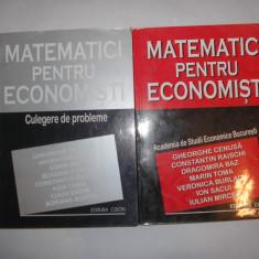 Matematici pentru Economisti - manual ASE 2 vol, manual + culegere probleme, P11 - Carte afaceri