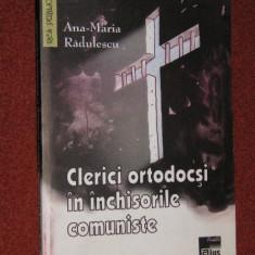 Clerici ortodocsi in inchisorile comuniste - Ana Maria Radulescu (judetul Olt) - Istorie