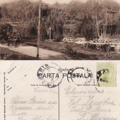 Craiova - Parcul Bibescu-birja