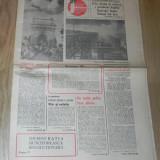 ZIARUL FLACARA NR 25/1981. 4 IUNIE. FOTBAL - INTEVIURI CU ILIE BALACI SI CORNEL DINU. CRAIOVA, DINAMO. MARAMURES