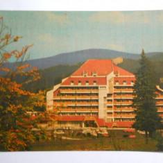 Romania-Predeal-Hotel Orizont - Carte Postala Muntenia dupa 1918
