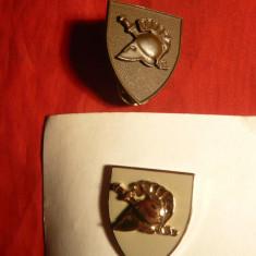 2 Insigne Militare Grecesti cu butoni