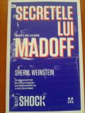 SECRETELE LUI MADOFF - Sheryl Weinstein, 2010