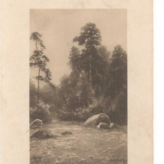 CPI (B1528) PEISAJ, VEDERE, RAU, COPACI, CIRCULATA 1912, RUTA IASI - BOTOSANI, STAMPILE - GOARNA, TIMBRU.