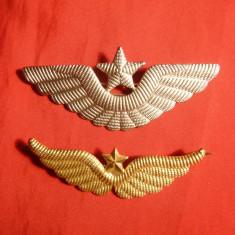 Set 2 Insigne Militare Aviatia Americana -Pilot Comandant - Insigna