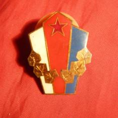 Insigna Militara Cehoslovaca