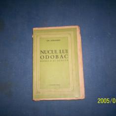 NUCUL LUI ODOBAC-EMIL GARLEANU