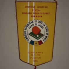 Fanion Concursul Republican de tenis de masa Paleta de Argint1986 Ploiesti