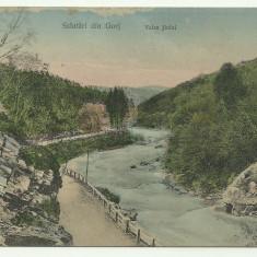 Gorj : Valea Jiului - circulata, timbru
