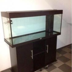 Acvariu JUWEL RIO 240 Litri cu filtru intern - Acvariu si terariu