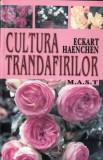 CULTURA TRANDAFIRILOR de ECKART HAENCHEN, Alta editura