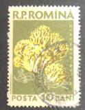 ROMANIA - EROARE CIUPERCI 10 BANI