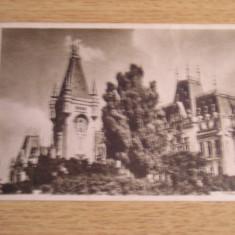 RC - IASI 74 - Carte Postala Moldova dupa 1918, Necirculata, Fotografie