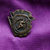 Insigna Polisportiv 1949
