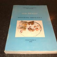 Lazarovici / Maxim - Gura Baciului - monografie arheologica - 1995