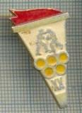 505 INSIGNA  - OLIMPICA -BOX -URSS -scriere chirilica pe spate -starea care se vede