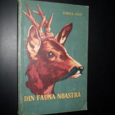 Ionel Pop , Din fauna noastra (vanatoare)