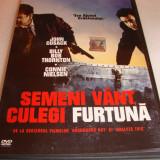 SEMENI VANT, CULEGI FURTUNA - John Cusack / Billy Bob Thornton DVD Film
