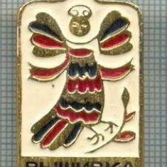 705 INSIGNA - VISHIVKA - URSS -sciere chirilica -starea care se vede
